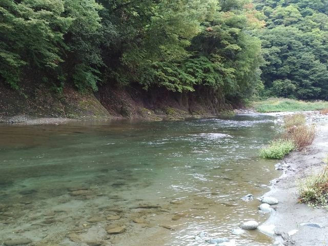 実に綺麗な川である。_新戸キャンプ場