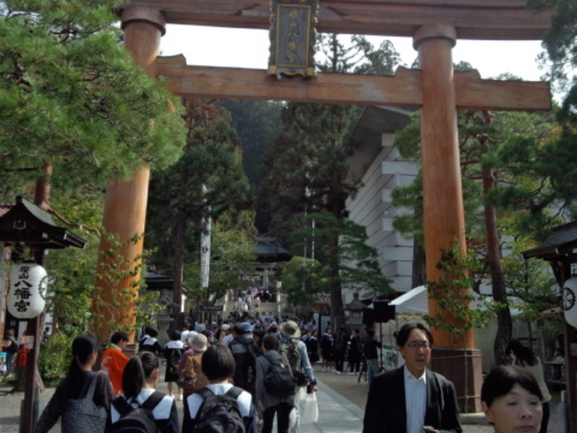 桜山八幡宮です_櫻山八幡宮