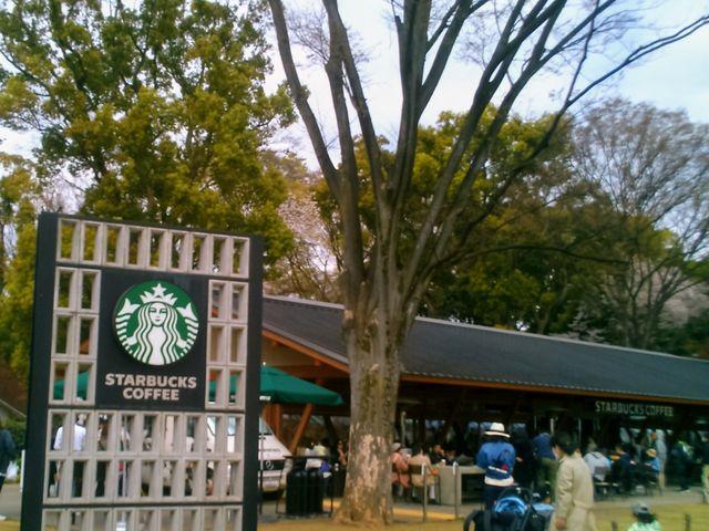 『スターバックス コーヒー 上野恩賜公園店』。_スターバックス コーヒー 上野恩賜公園店