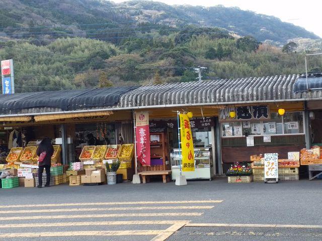 外の市場_マリンセンターおさかな村