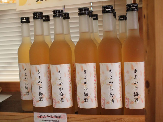 きよかわ梅酒!_道の駅 清川