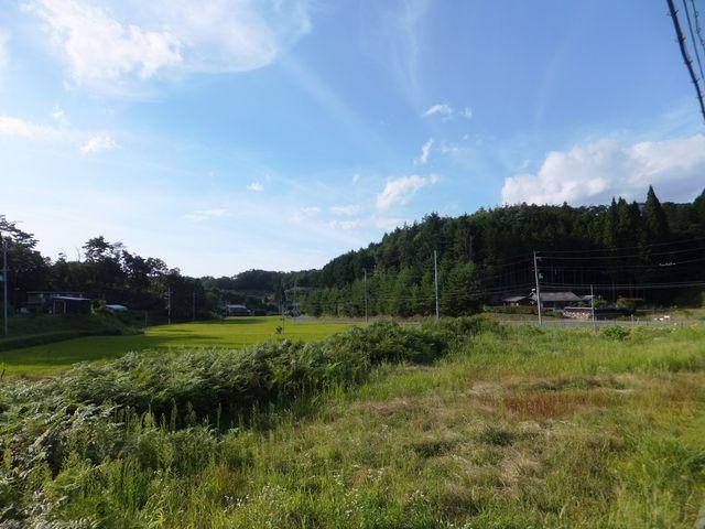水田と畑:山頂付近にいるとは思えません。_童仙房高原