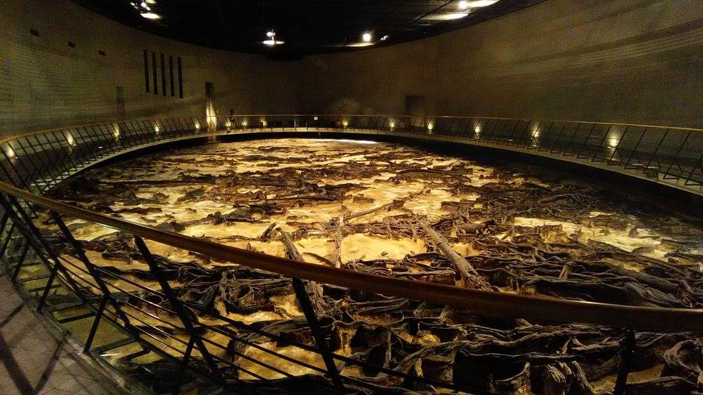 地底の森ミュージアム(富沢遺跡保存館)
