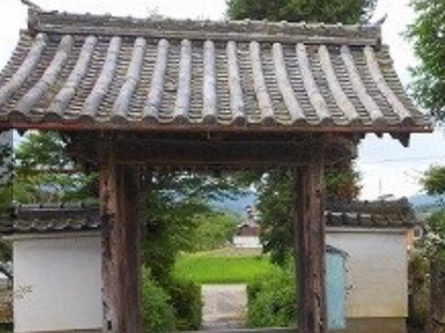 自然_大円寺