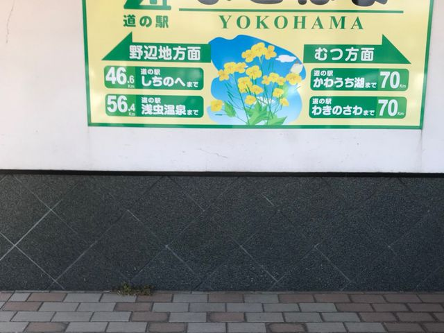 写真_道の駅 よこはま菜の花プラザ