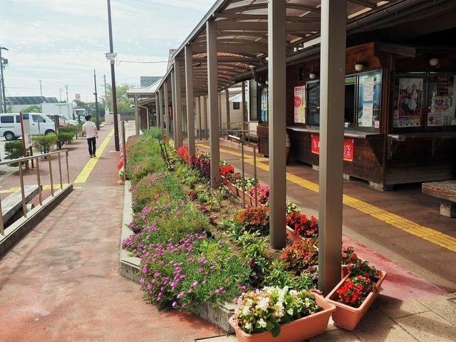 道の駅 花の里いいじま_道の駅 花の里いいじま