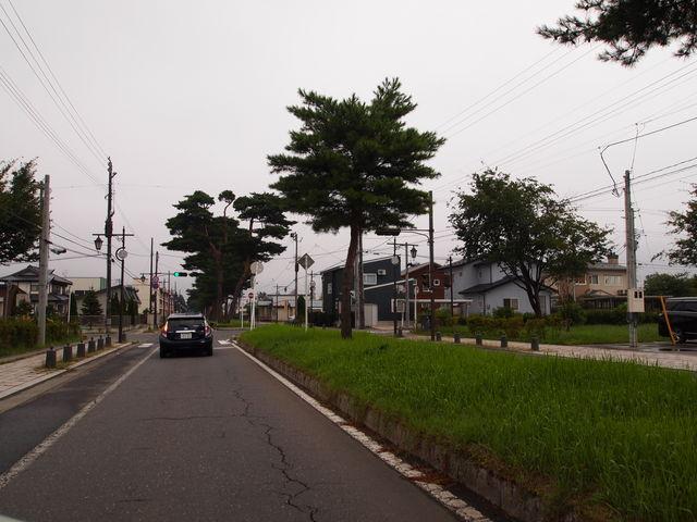 始まりは普通の道路ですが_官庁街通り駒街道