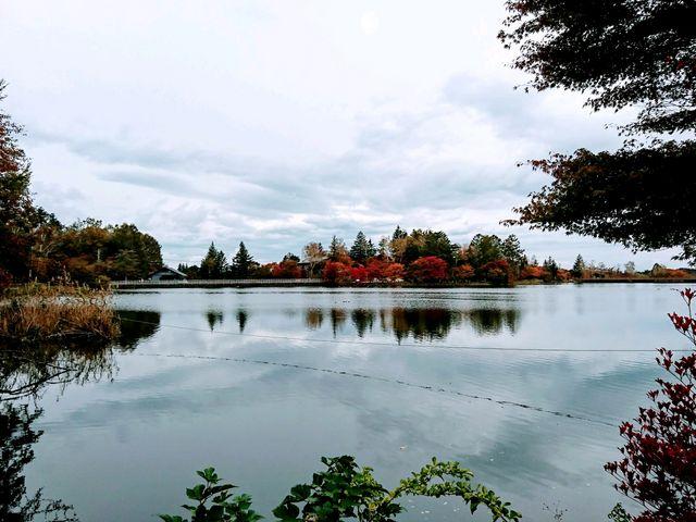 紅葉の蓼科湖_蓼科湖