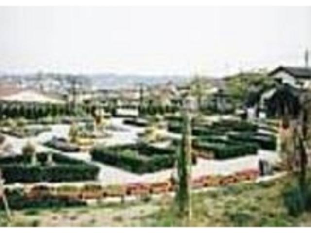 週末には地元をはじめ遠方からの人で賑わう_メディカルハーブガーデン 生活の木 薬香草園