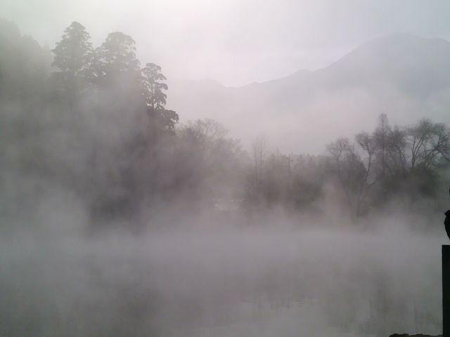早朝の金鱗湖!とても幻想的な湯気でとても幻想的な雰囲気でした。_金鱗湖