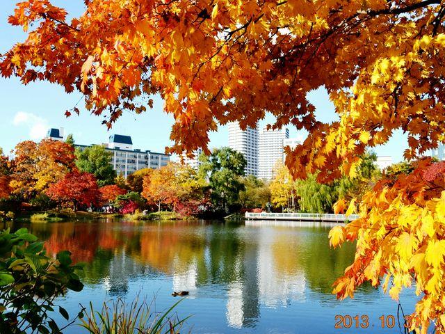 近くにはホテルも沢山あり、旅の朝の散歩もいいものですよ!_中島公園