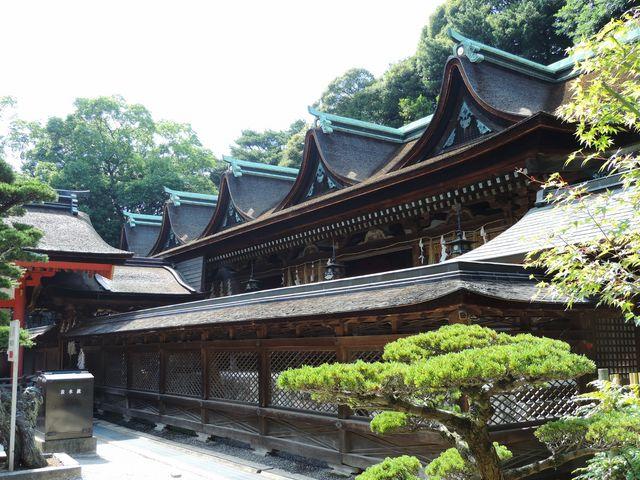 五連の破風が美しい。_住吉神社