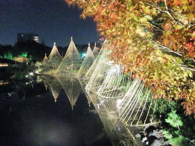橋からの眺めが素晴らしかった_白鳥庭園