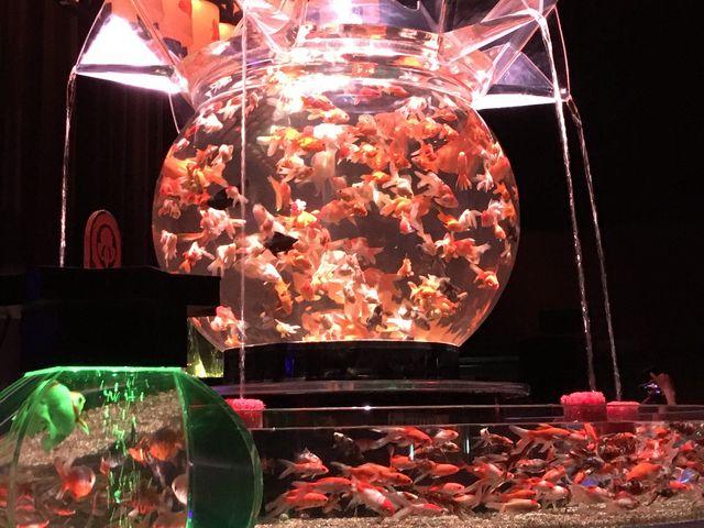 大きな金魚鉢_堂島リバーフォーラム