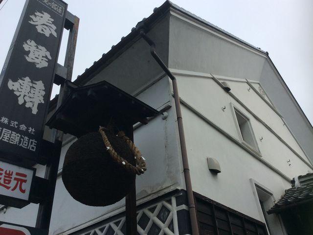 立派な蜂の巣_酒蔵ギャラリー六斎