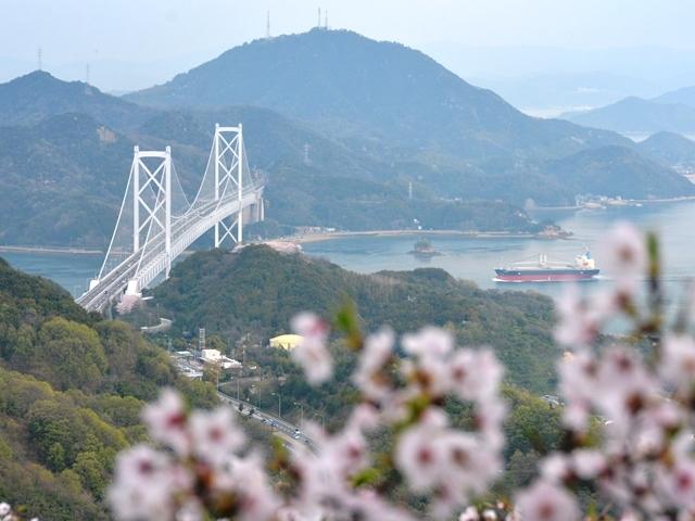 因島・白滝山山頂から(平成29年4月9日撮影)_因島大橋