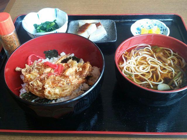 かき揚げ丼とミニ山菜セット_かもしか茶屋