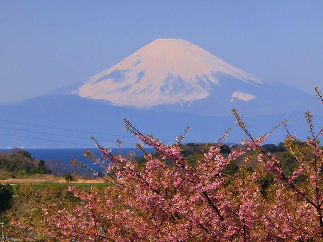 小松ケ池公園浦山から観えた富士山_三浦海岸海水浴場