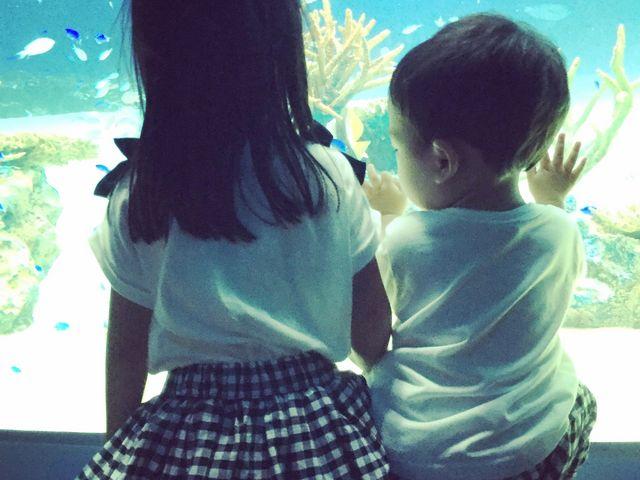 魚見てます_マリホ水族館
