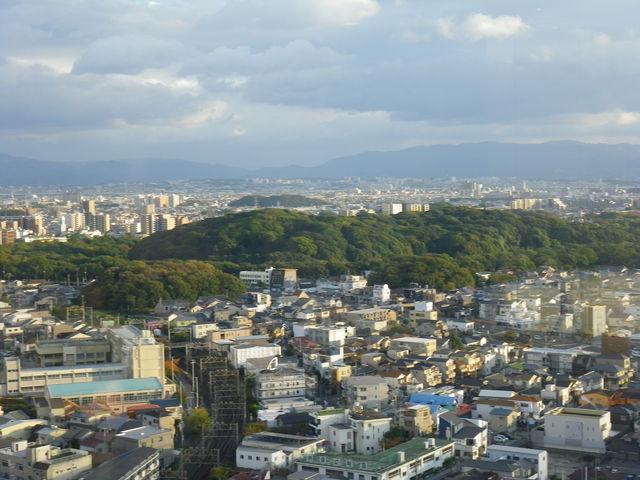 緑に覆われた仁徳天皇陵。近くには、いくつもの古墳が見られる。窓の下に写真と解説があるのでよくわかる。_堺市役所21階展望ロビー