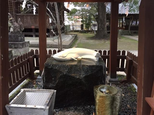 なまず様。_豊玉姫神社
