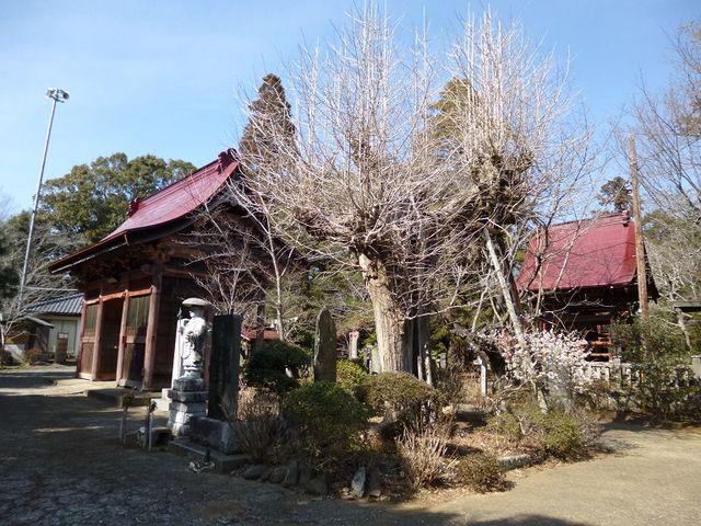 静かな場所にあります_松虫寺