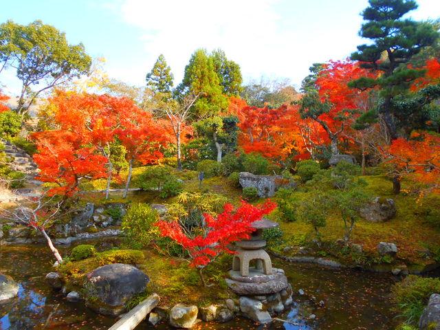 綺麗なお庭でした_吉城園