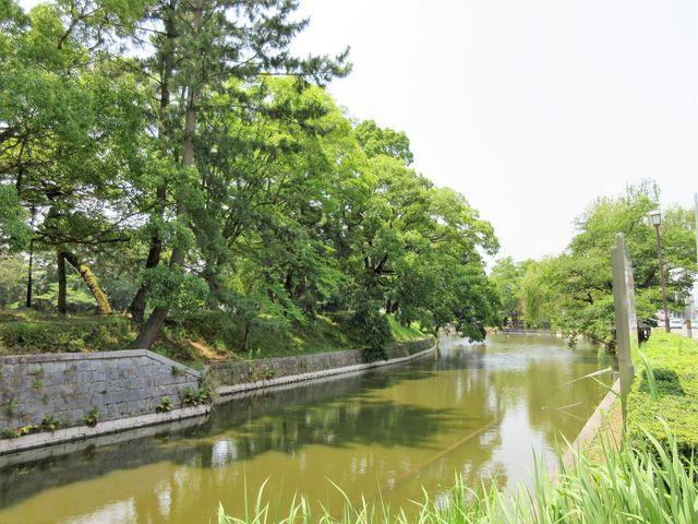 2017年7月9日よっちん撮影)土浦城跡の城址公園「亀城公園」_亀城公園