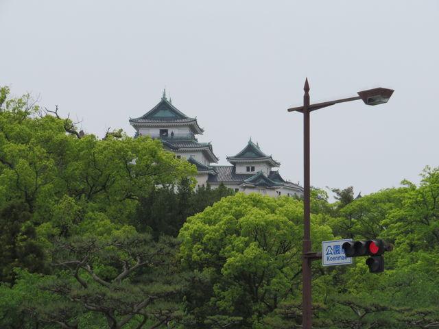 遠くから望む_和歌山城