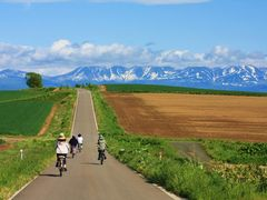 Guided cycling Tour美瑛の写真1