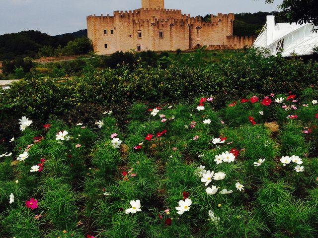 花も綺麗に手入れしてあり綺麗だった_志摩スペイン村パルケエスパーニャ
