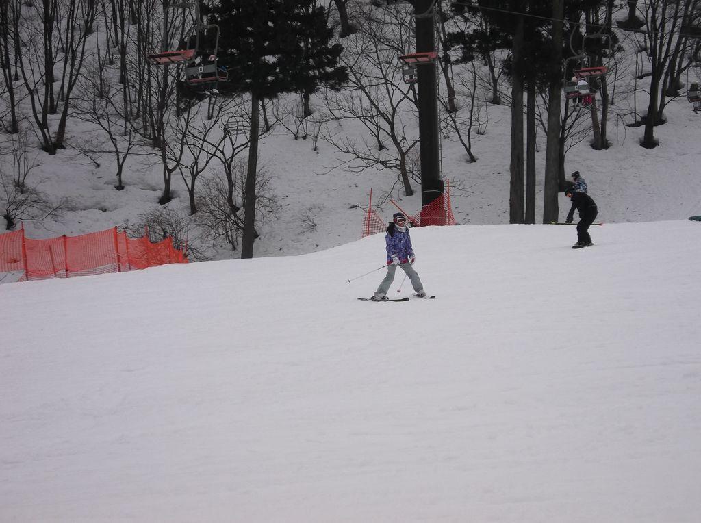 場 千種 高原 スキー