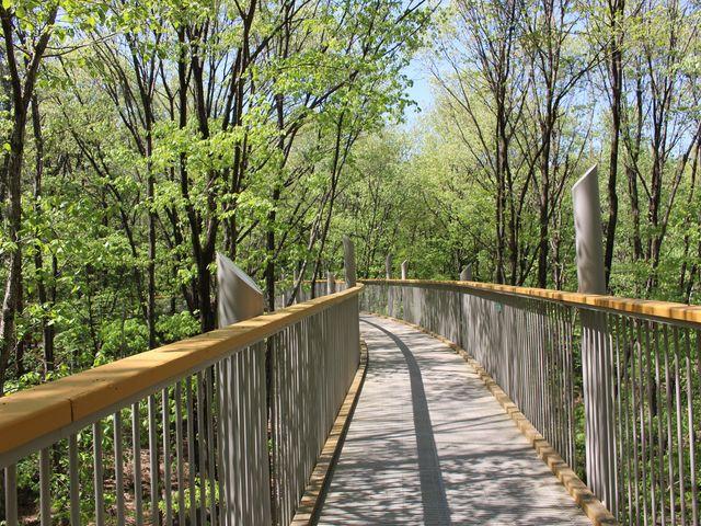 高い位置に設置された通路を歩く_国営アルプスあづみの公園 大町・松川地区