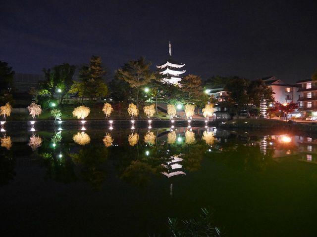 夜の雰囲気は素晴らしいです^ ^_猿沢池
