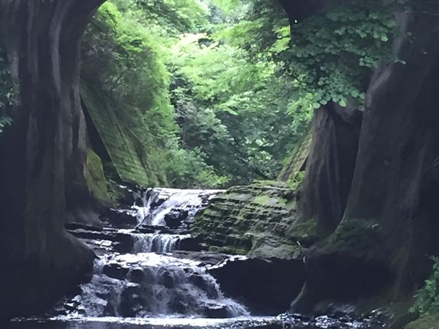 実際は何十倍も綺麗です。_濃溝の滝
