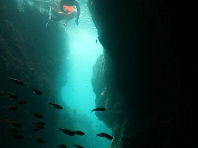 青の洞窟に感動!_青海島ダイビングセンター