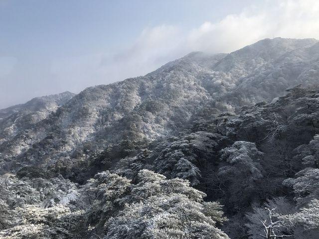 六甲山の樹氷_六甲有馬ロープウェー