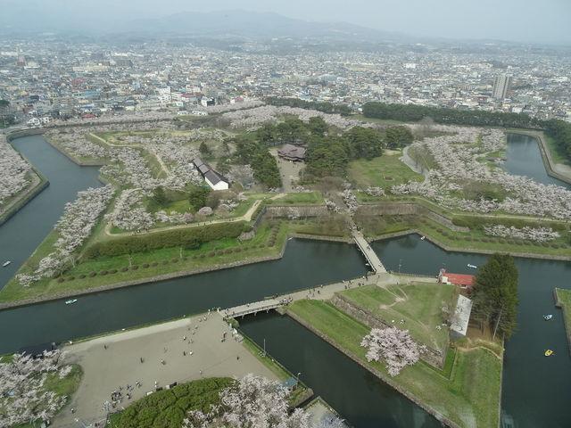 展望台からの写真ですが、桜の時期でもありかなり混雑していました。_五稜郭公園