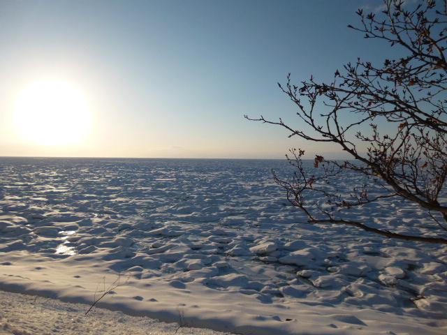 美しい光景です_知床海岸