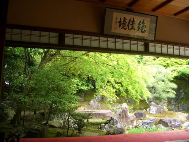 緑も美しい_圓徳院