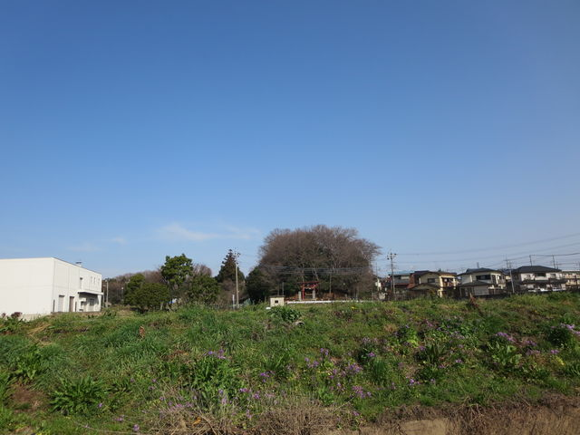 川_千曲川