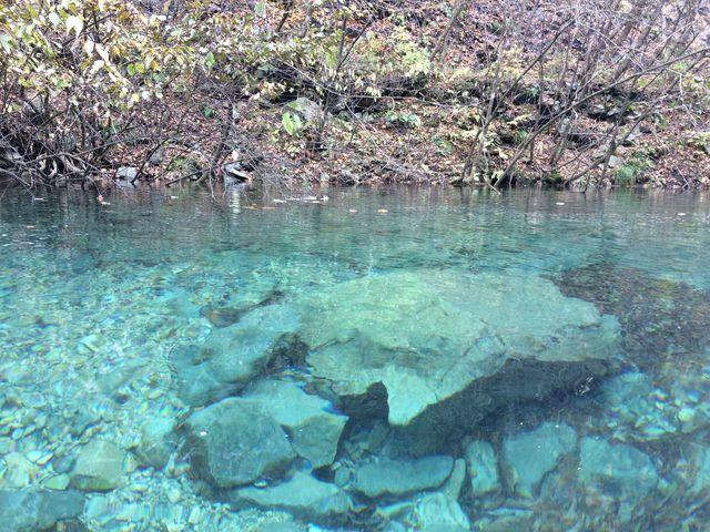 水底がよくみえる_四万川ダム