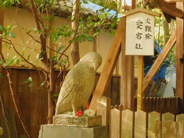 狛鳥!?_大豊神社