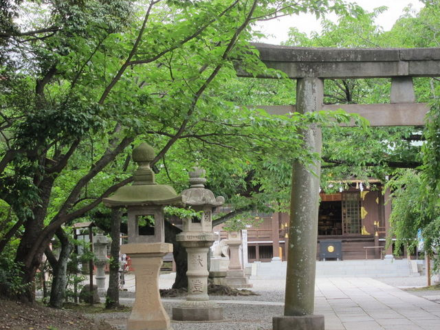 緑豊か_日枝神社