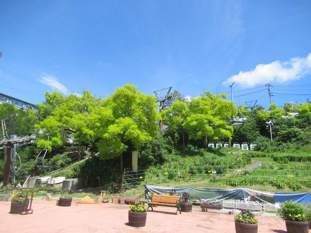 リフト乗り場_白樺リゾート黄金アカシアの森 展望リフト