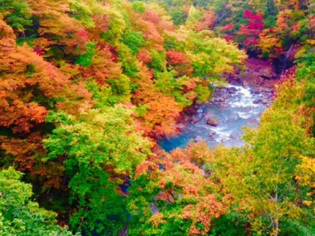 森の大橋_松川渓谷