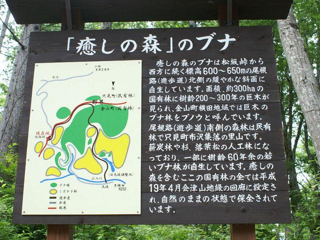 案内図_癒しの森