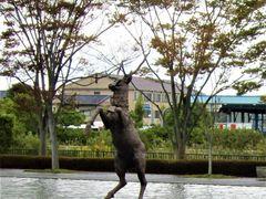 佐川 美術館 ランチ