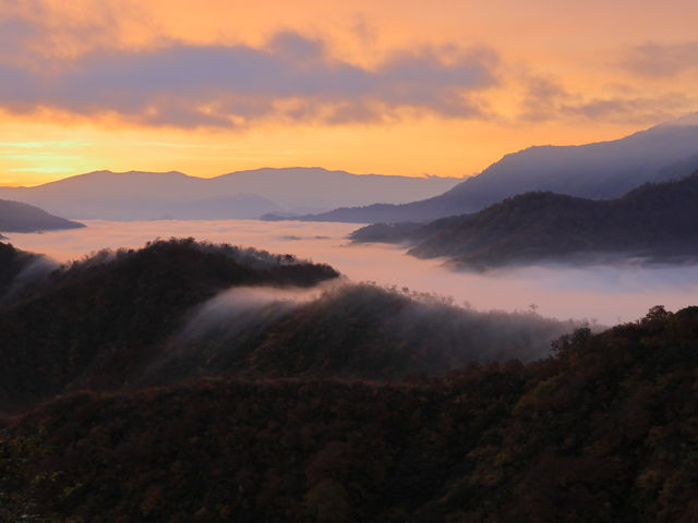 雲がオレンジ色!_枝折峠 雲海滝雲