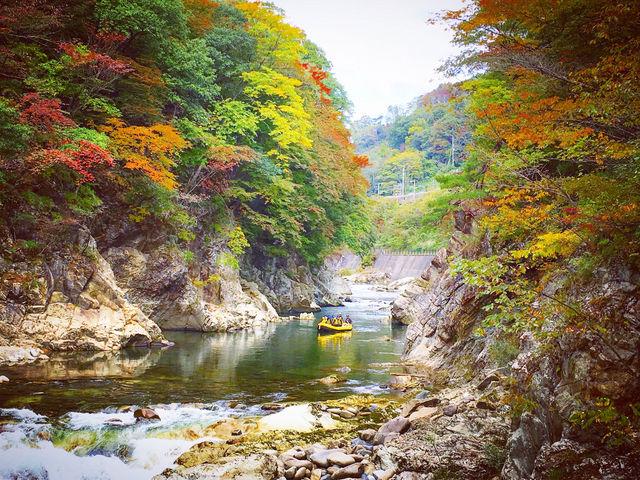 秋のりんご狩り&紅葉ラフティングも好評です♪_DEEP NATURE